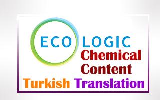 Turkish Translation of the Website